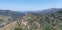 Dans les montagnes crétoises entre montagnes via Platanias, Fournes, Meskla, Zourva et Therissos (Crète)