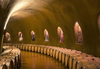 Comment nettoyer sa cave à vin