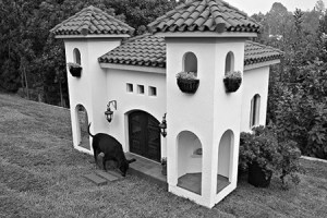 doghouse-Spanish Colonial
