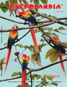 Quepolandia April 2014 cover