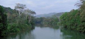 Rio Barú