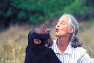 Jane Goodall hooting with a chimp