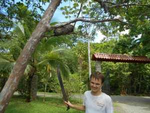 Our volunteer Duncan finding termites and ants for an anteater