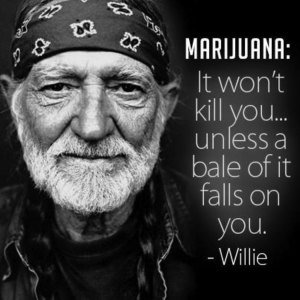 Marijuana won't kill you