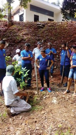 Iguana Tours Tree Planting