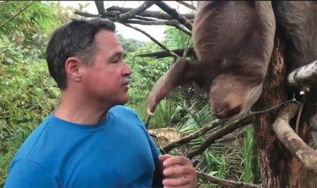 Jeff Corwin and sloth