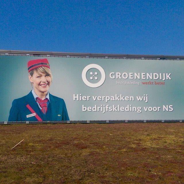 Spandoek Groenendijk