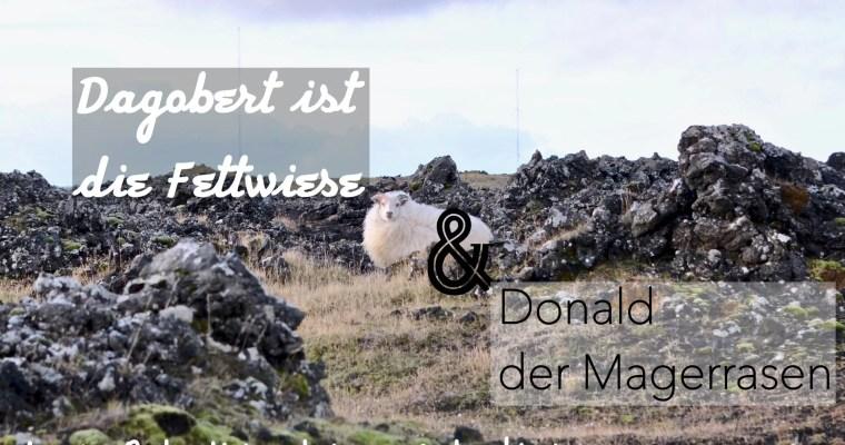Dagobert ist die Fettwiese und Donald der Magerrasen