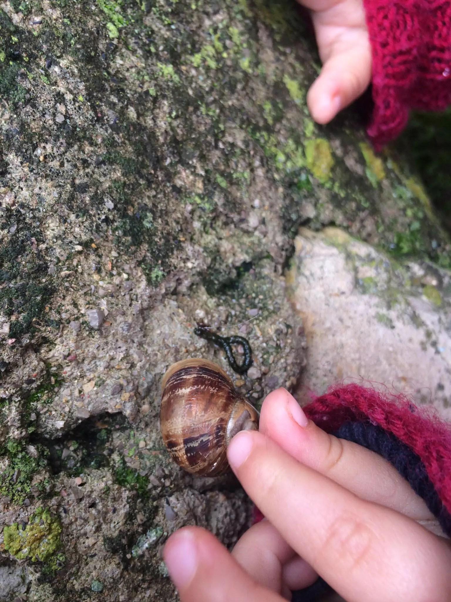 Stadtkinder entdecken das Wunderland Natur vor der Haustür