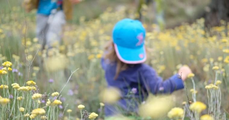 Angst vor der Natur – welche Ängste Eltern haben und was es zu beachten gilt