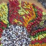 La Ley de Semillas, la agroecología y el buen comer
