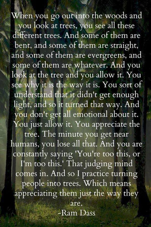 Ram Dass - Look at the Tree