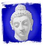 Vipassana Fellowship