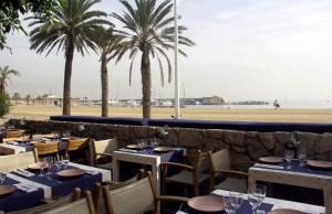RESTAURANTES CON TERRAZA EN BARCELONA: BARCELONETA. Qué se cuece en Bcn