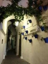flamenco barcelona en vivo y directo el tablao de carmen que se cuece en bcn (29)