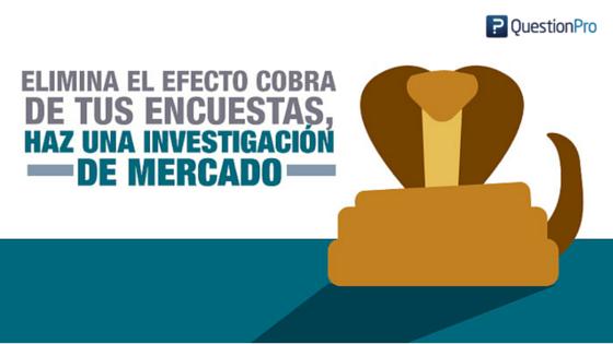 InvestigaciondeMercados