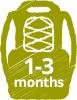 1-3-months