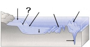 Quia  Ocean Floor Features (SOL 56)