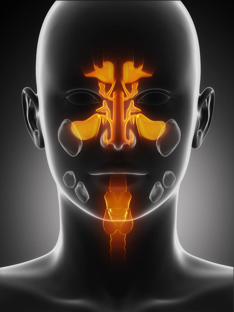 House Call Doctor When Is A Sinus Infection Serious Quick And Dirty Tips