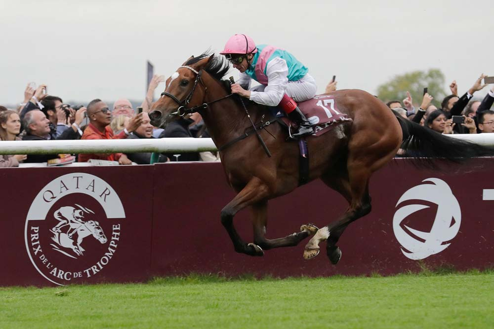 Enable winning the Arc earlier this year.