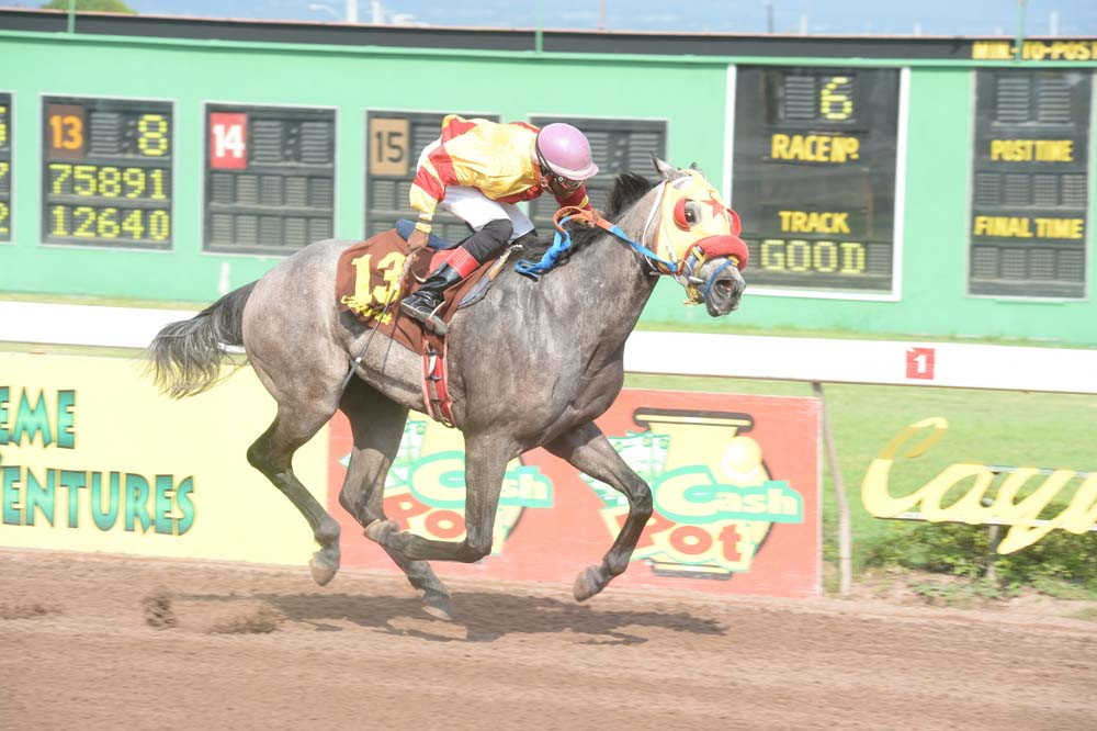 Major Force declared as a late non-starter on today's mid-week card at Caymanas Park.
