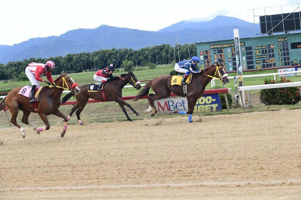 DERBY DASH: Wise Guy, right, with champion apprentice Kimal Santo in the irons, hits the finish line first in the TRINRE Trinidad Derby Stakes yesterday to become the fourth Triple Crown winner since the sport of horse racing was centralised at Santa Rosa Park, Arima, in 1994. Apache, left, and Bella Riva were second and third, respectively.