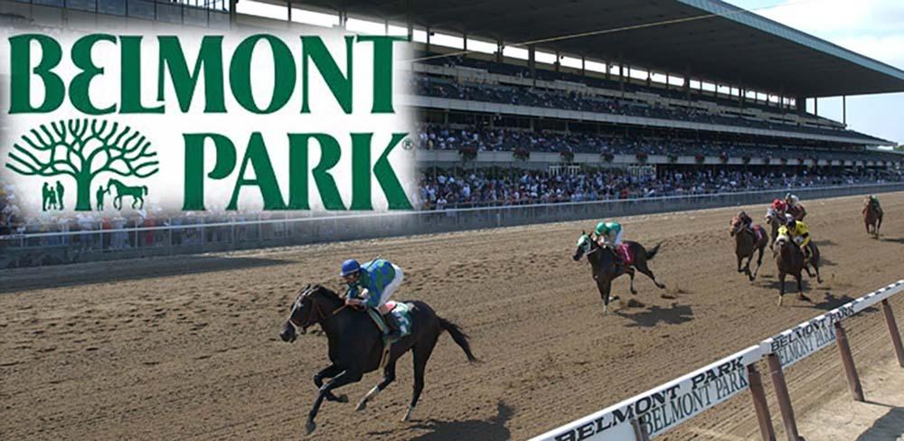 belmont-park-horses1