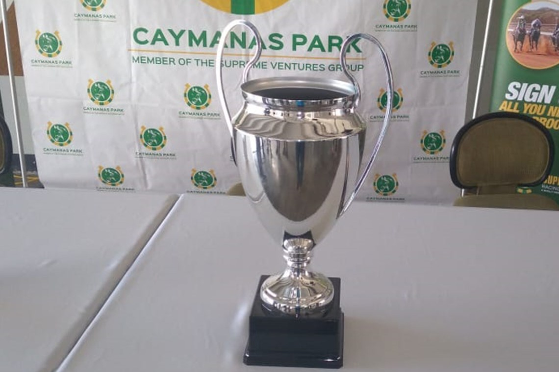 The Kingston Cup
