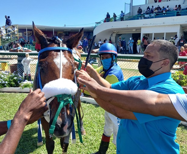 Trainer Gregory Forsyth tending to his winning charge Cartel. Looking on is jockey Anthony Thomas.