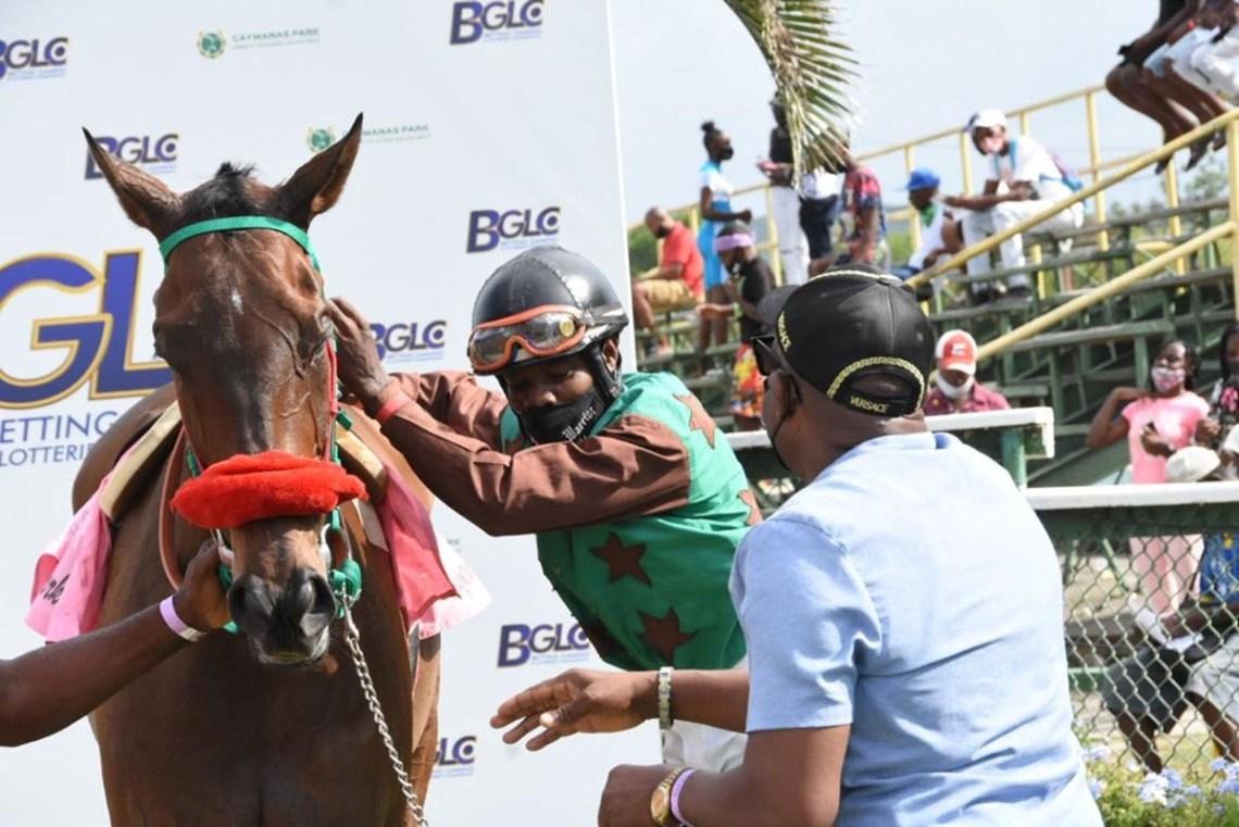 Jockey Dane Nelson dismounting General Mubaraak with trainer Lawrence Freemantle looking on.