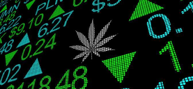 Canadian Marijuana Stocks Continue to Tank
