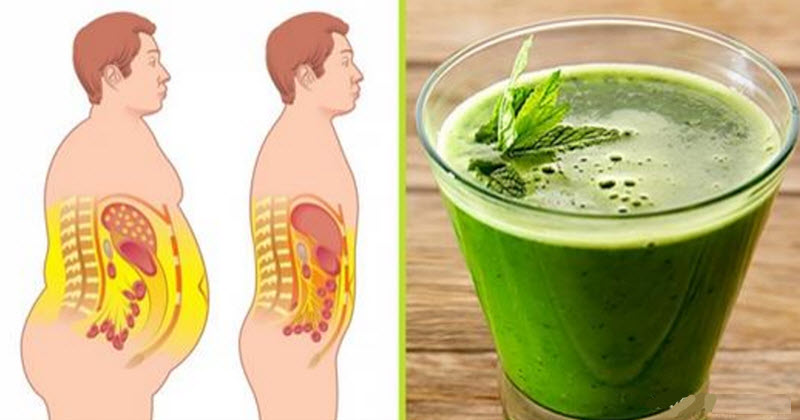 משקאות בריאות שיעזרו לכם לרדת במשקל ולשמור על חיים בריאים!