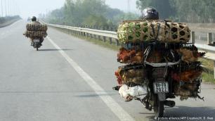 الدراجات في فيتنام مجهزة بمحركات أيضا ولكن استطاعتها أقل من الدراجات النارية العادية، تنتشر هذه الدراجات في فيتنام بكثرة، ففي العاصمة هانوي حيث يبلغ عدد سكانها حوالي سبعة ملايين نسمة، يصل عدد الدراجات فيها إلى حوالي أربعة ملايين دراجة، استخدام الدراجات في فيتنام لا يقتصر على السكان فحسب، بل حتى إن القيام بجولة بالدراجات في فيتنام يحظى بشعبية واسعة لدى السياح أيضا.