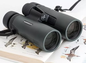 good hunting binoculars on a budget