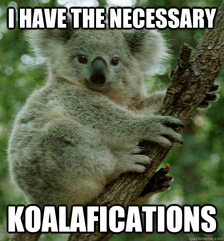 Image result for koalafications