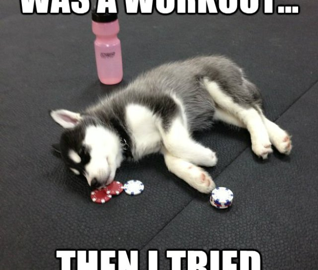 I Thought Running Was A Workout Then I Tried Crossfit