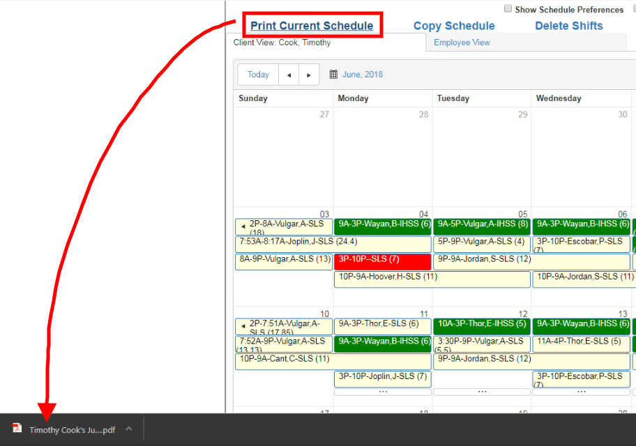 print client or employee schedule from QSP