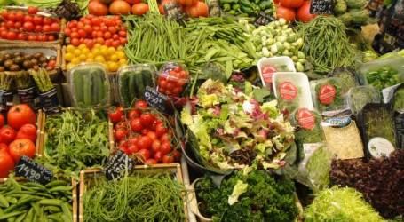 ירקות – לאכול בלי הגבלה ולרזות