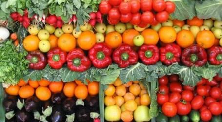 תפריט דיאטה לצמחונים – 1200 קלוריות- לדיאטה מהירה