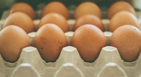 להוריד עד 10 קילו בשבועיים – דיאטת חלבונים קיצונית