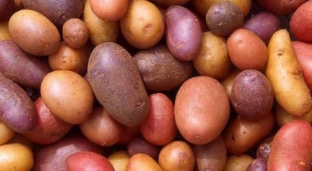 דיאטת תפוחי אדמה לשלושה ימים
