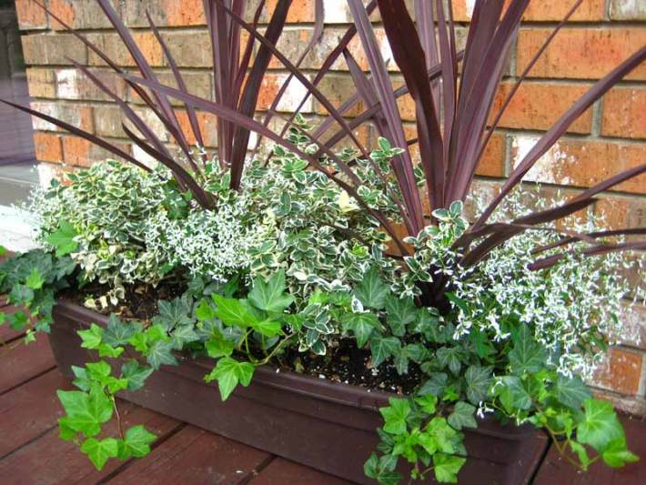Container-Gardening-Ideas-1