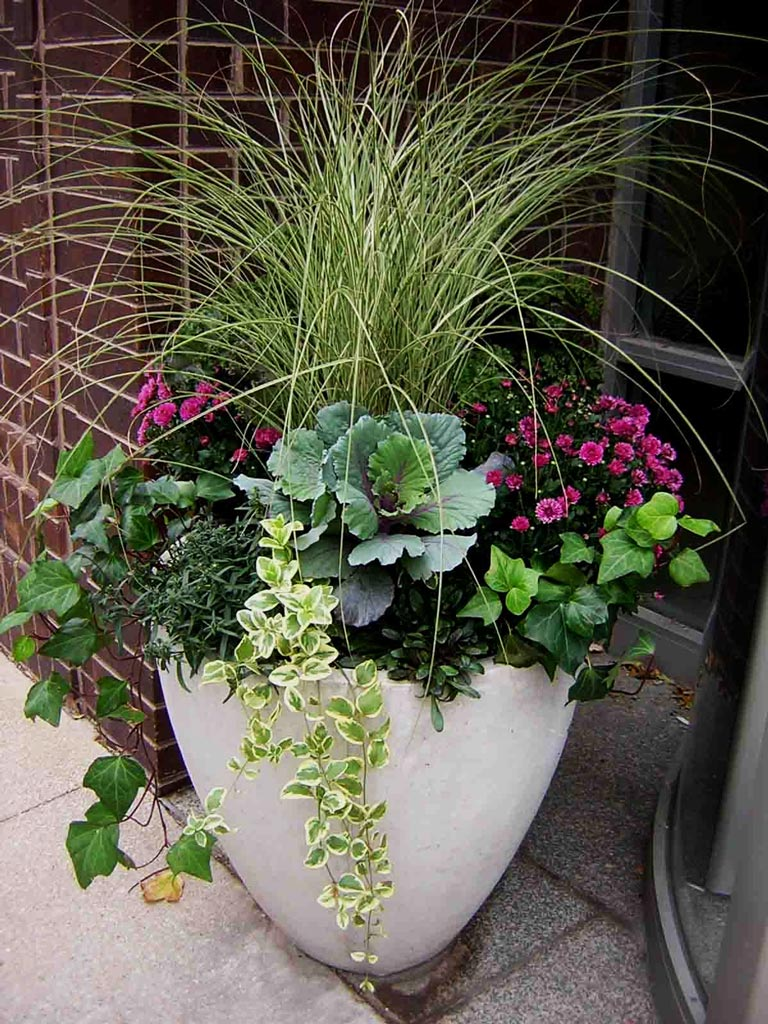 Container Gardening Ideas - Quiet Corner on Tree Planting Ideas For Backyard id=83357