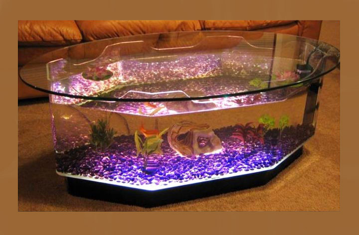 Quiet CornerBeautiful Coffee Table Aquariums Quiet Corner