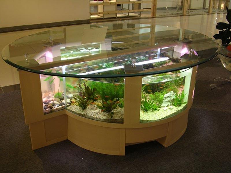 Quiet Corner Beautiful Coffee Table Aquariums Quiet Corner