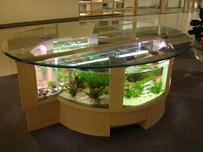 Beautiful Coffee Table Aquariums (17)