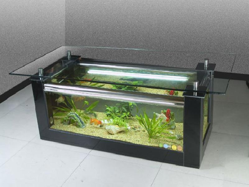 Quiet corner beautiful coffee table aquariums quiet corner - Table basse aquarium design ...