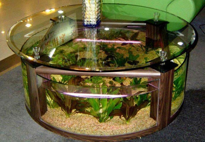 Beautiful Coffee Table Aquariums (4)