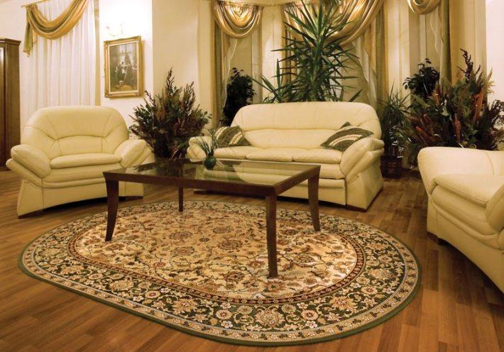 Living Room Carpet Ideas and Photos (17)