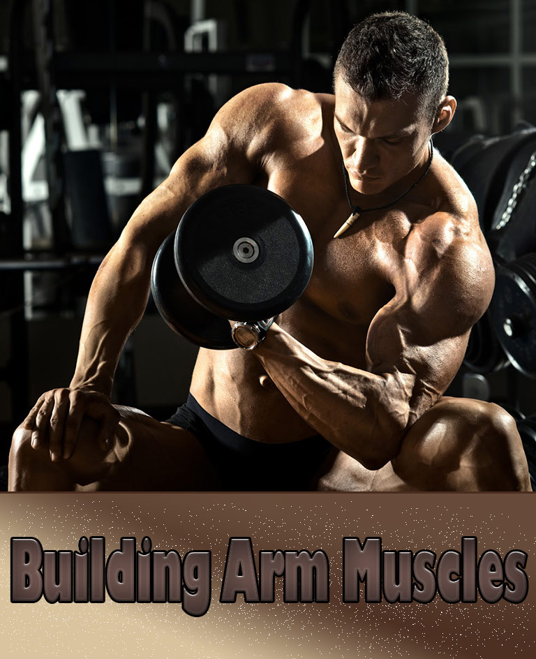 Strength Training: Building Arm Muscles - Quiet Corner